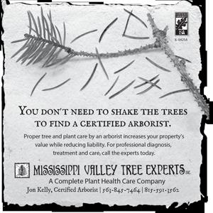 Shake-the-Trees-DBQ#