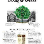 Drought_Page_1