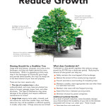 ReduceGrowth_Page_1