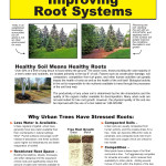air-spade-improving-roots_Page_1