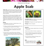 apple-scab-SS_Page_1